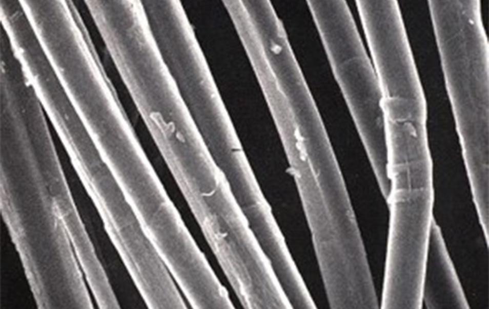 Des matériaux biosourcés autoréparables