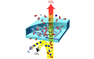 Des polymères poreux pour lutter contre les gaz à effet de serre